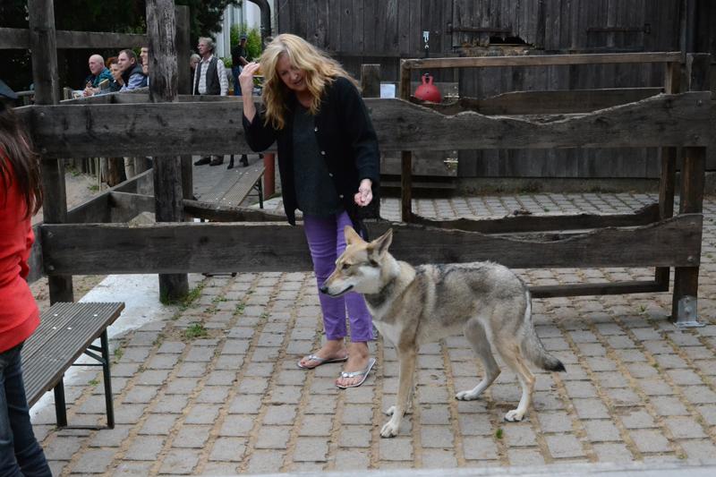 Wölfe auf dem Hof-Fest